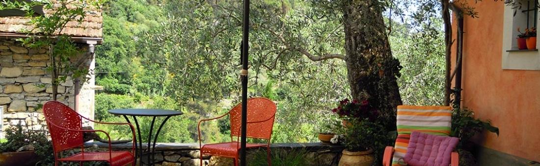 I Freschi, case vacanza tra gli ulivi